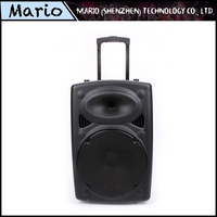 12V Battery Dual DJ Party Portable Rechargeable Professional Trolley Bluetooth Speakers