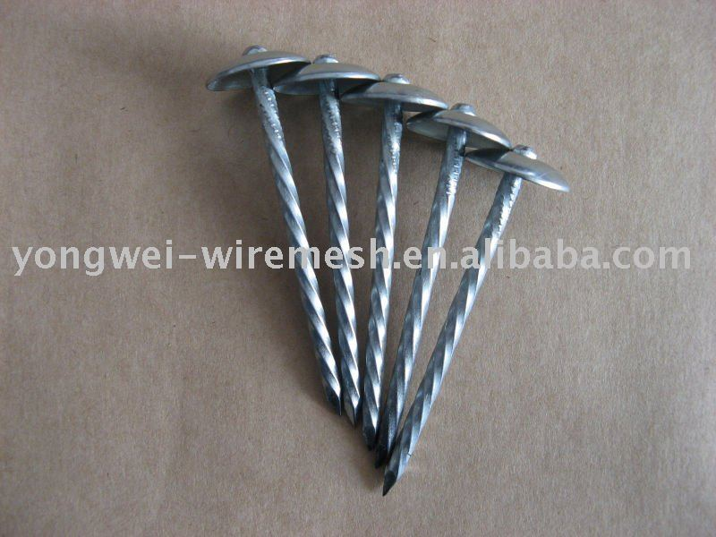 roofing nails