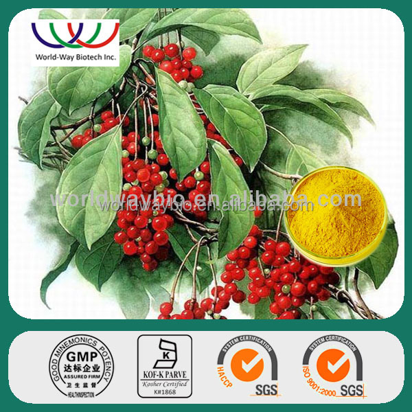Free sample ! 100% natural kosher schisandra berry powder extract ,wu wei zi powder