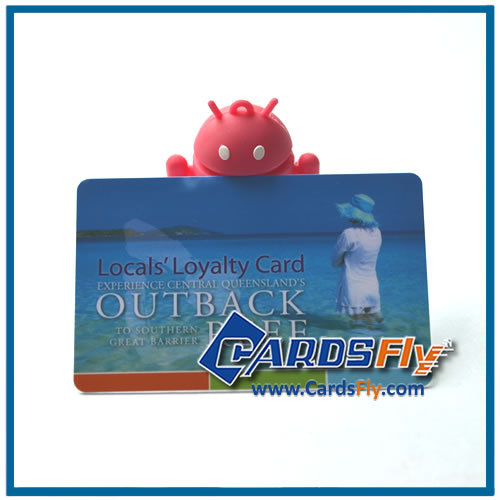 Plastic Loyalty Card Terminal