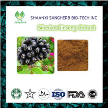 Best price Siberian Ginseng Extract Brown-Yellow Eleutheroside powder