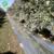 agriculture usage PE/PET mulch film Silver plastic fruit Reflective mulch film