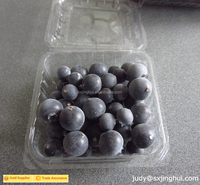 China Manufacturer plastic blueberry boxes for packaging