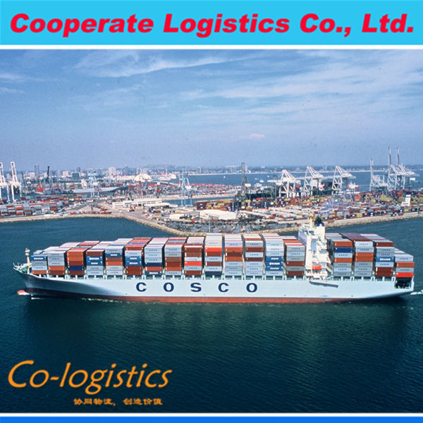 Qingdao cargo shipping agent international logistics container shipping service ---Vera skype:colsales08