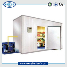 Customized Freezer Room Used as Cold Storage Warehouse for Fish And Meat