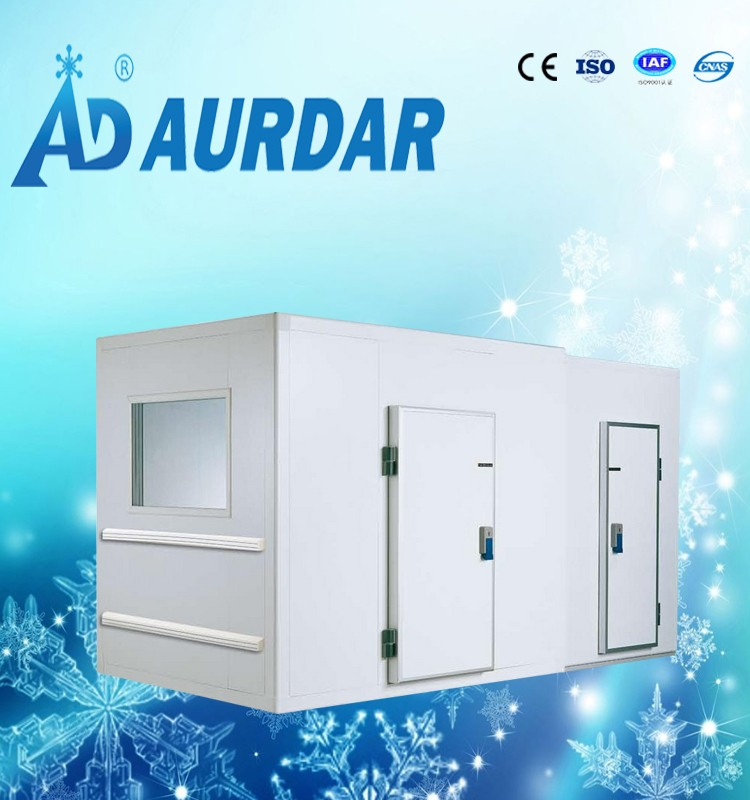 Aurdar made positive cold room price used for meat fish chicken