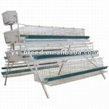 closed water press regulator layer chicken cage