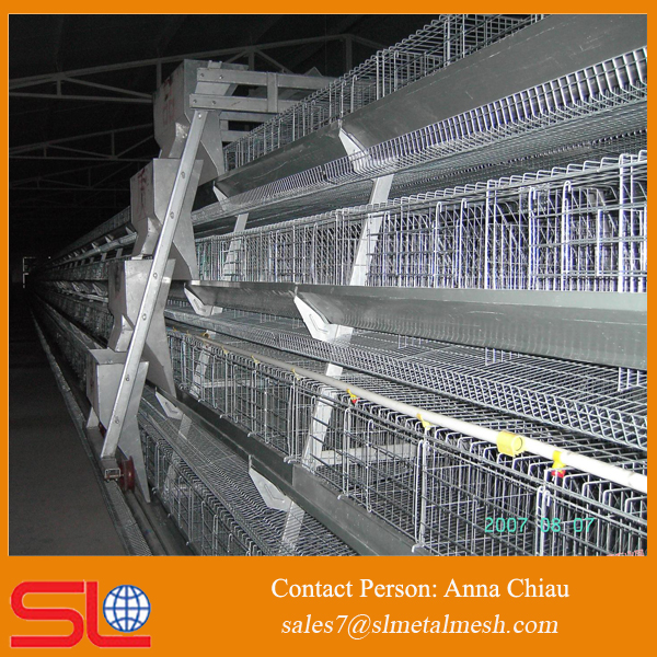 layer egg chicken cage/poultry farm house design breeding cage