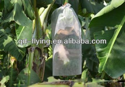 PP Non Woven Bananas Bunch Bags/Bananas Sleeves/Bananas Cover bags