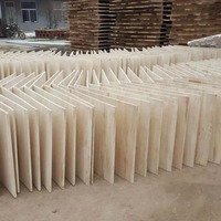 eco-friendly paulownia board, paulownia lumber for sale, sawn timber paulownia wood
