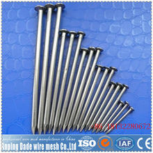Good quality wire nail distributors