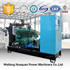 Green Power Nature Gas Generator with lower price