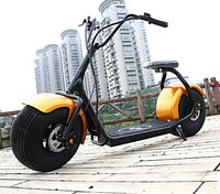 the Economist Harley Bike on the street city coco electrick bike 1000W Brushless Adult 2 Wheels Electric Motorcycle