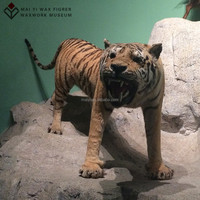 high-simulated lifesize animal sculpture tiger for exhibition
