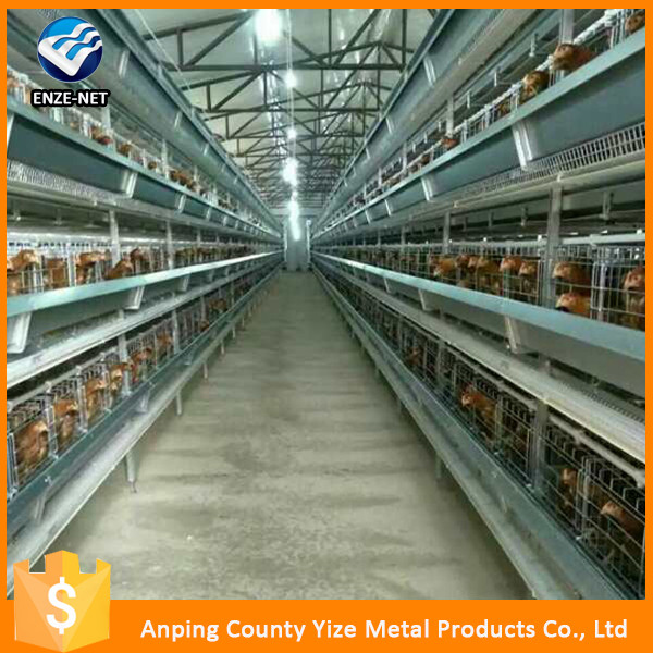 3-4 layers Chicken small farm Cage equipment/equipment for chicken factory/poultry equipment for broiler (Egg Chicken)