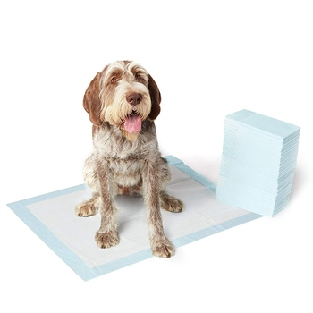 Hot Selling High Absorbent Pet Training Pads
