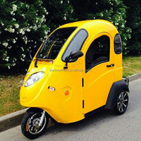 3 Wheel Electric Car with EEC
