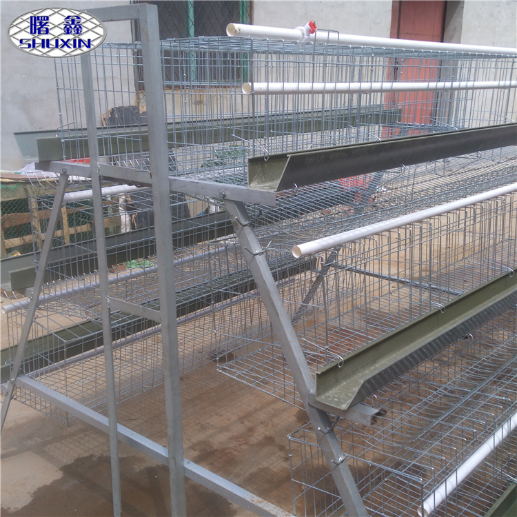 Anping Factory Best Price Animal Cage for home grown Chickens and eggs