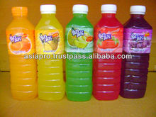 Fruit Juice 25% in Bottle from Thailand