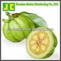 Sell Garcinia Cambogia P.E. as weight loss supplement, 40%~60% Hydroxycitric Acid HCA