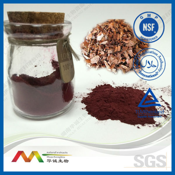 NSF-GMP Supplier Pine Bark Extract 95% OPC