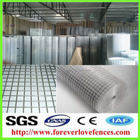 high quality welded galvanized wire mesh