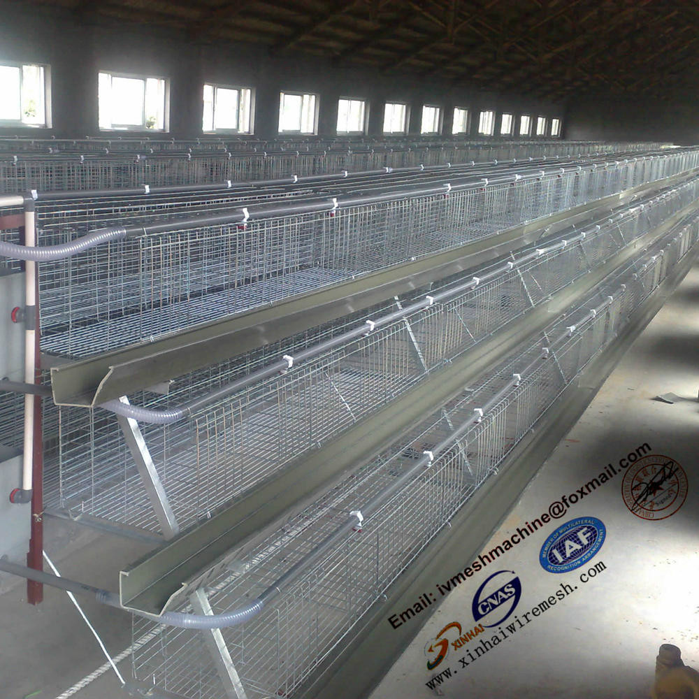 Anti rust Africa poultry farm used chicken egg layer cage for sale