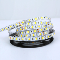 RGB 5050 SMD Flexible Light 12V