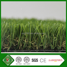 C Shape Soft 35 MM height Natural Looking Ornamental Tall Grasses For Landscaping
