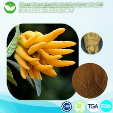 Hot Sale Herbal dodder seed extract powder male penis enlargement medicine