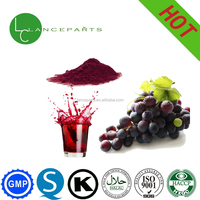 Grape extract fruit powder from china manufacturer