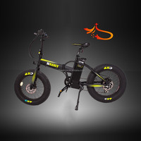 Hasky ,snow riding fat tyre, Coyote connect folding retrofit electric motor bike