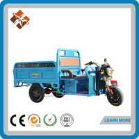 India bajaj 3 wheeler motorized electri tricycle for adults on sale