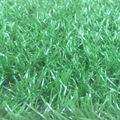 Single color football fields decoration green 25mm artificial turf grass mat