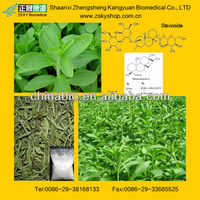 Stevia Extract Powder Stevioside from GMP China supplier