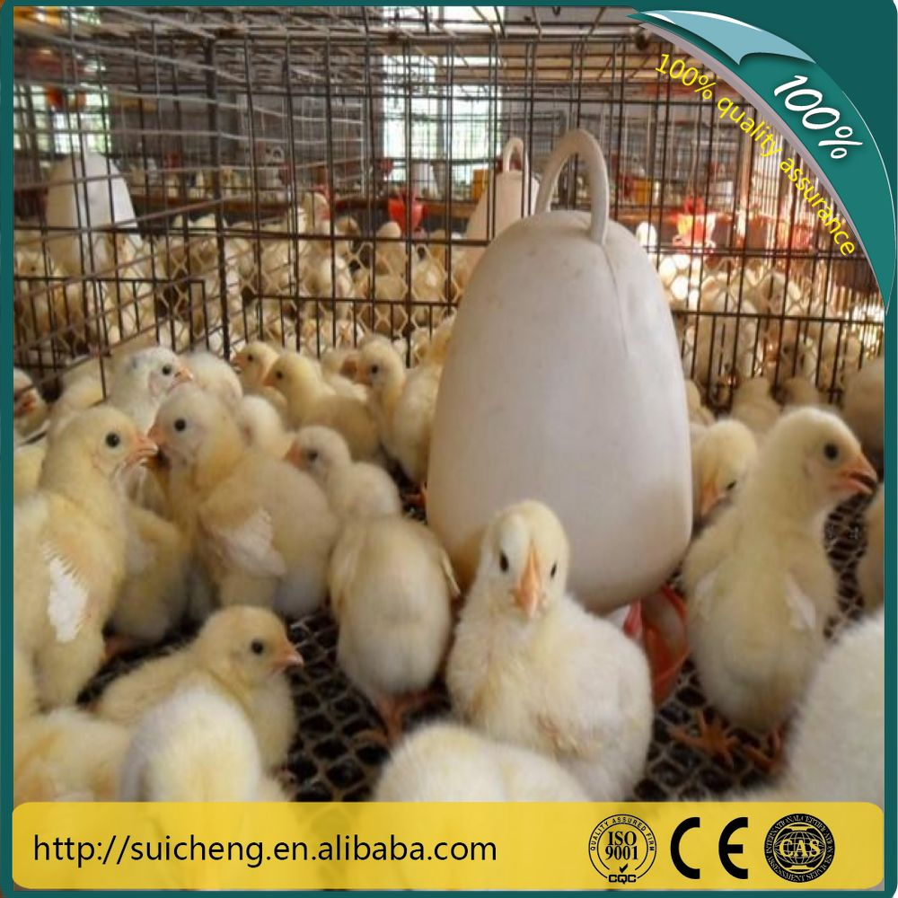 Guangzhou Breeding Cage/Poultry Farm Equipment H Type 3Layer Baby Chicken Cage
