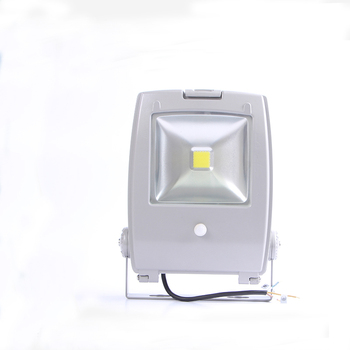 Super bright COB QQ Heavy Aluminum housing 30w led flood light