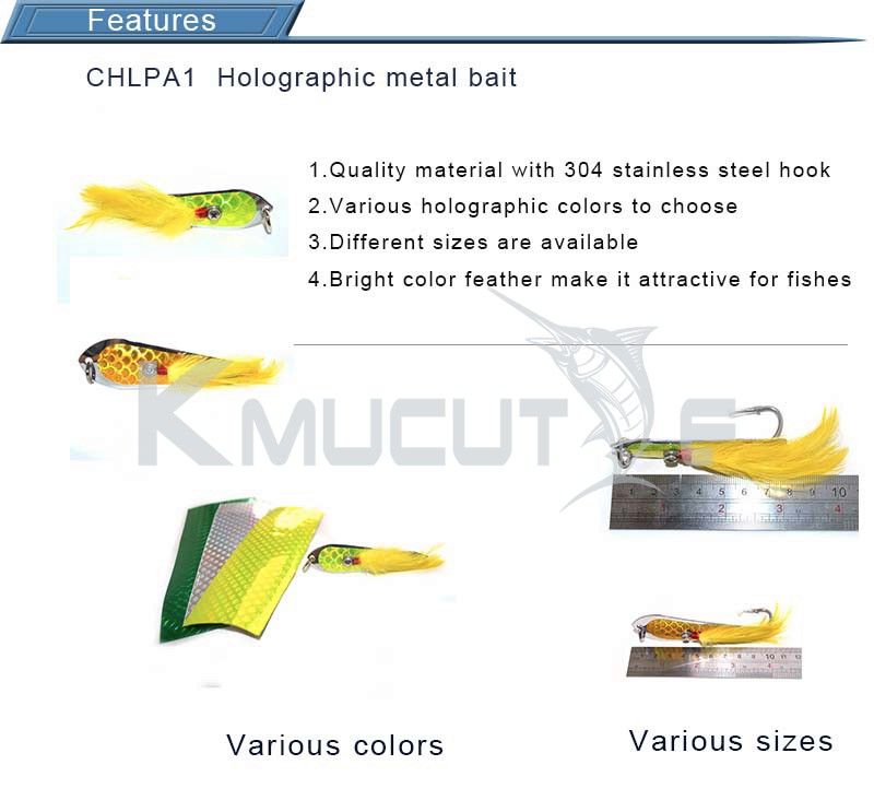 Chentilly CHLPA1 spoon lure metal blade fishing bait holographic spoon hologram spinner bait