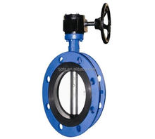 China Manufacturer Double Flange Center Line Butterfly Valve with Drawings