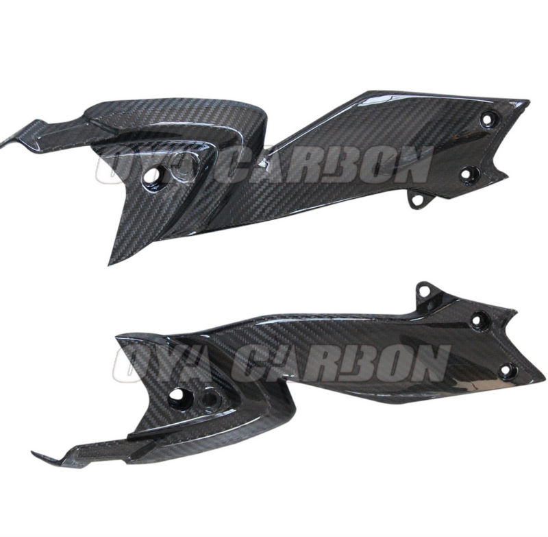 Motorcycle Side Panel in carbon for MV Rivale 800 2013