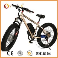 green power fashion double battery electric bikes from china