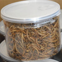 dried mealworm for bird food superworm