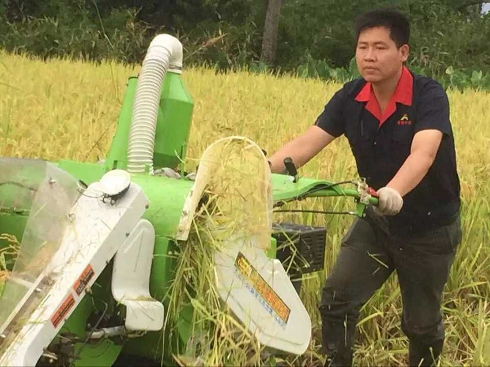 PADDY FIELD HARVESTER