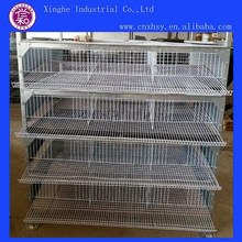 High Quality Quail Used Cages for Sale