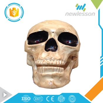 Wholesale price music electric toy halloween skull halloween skull for children