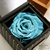 cheap and quality preserved rose for wedding favor return gift