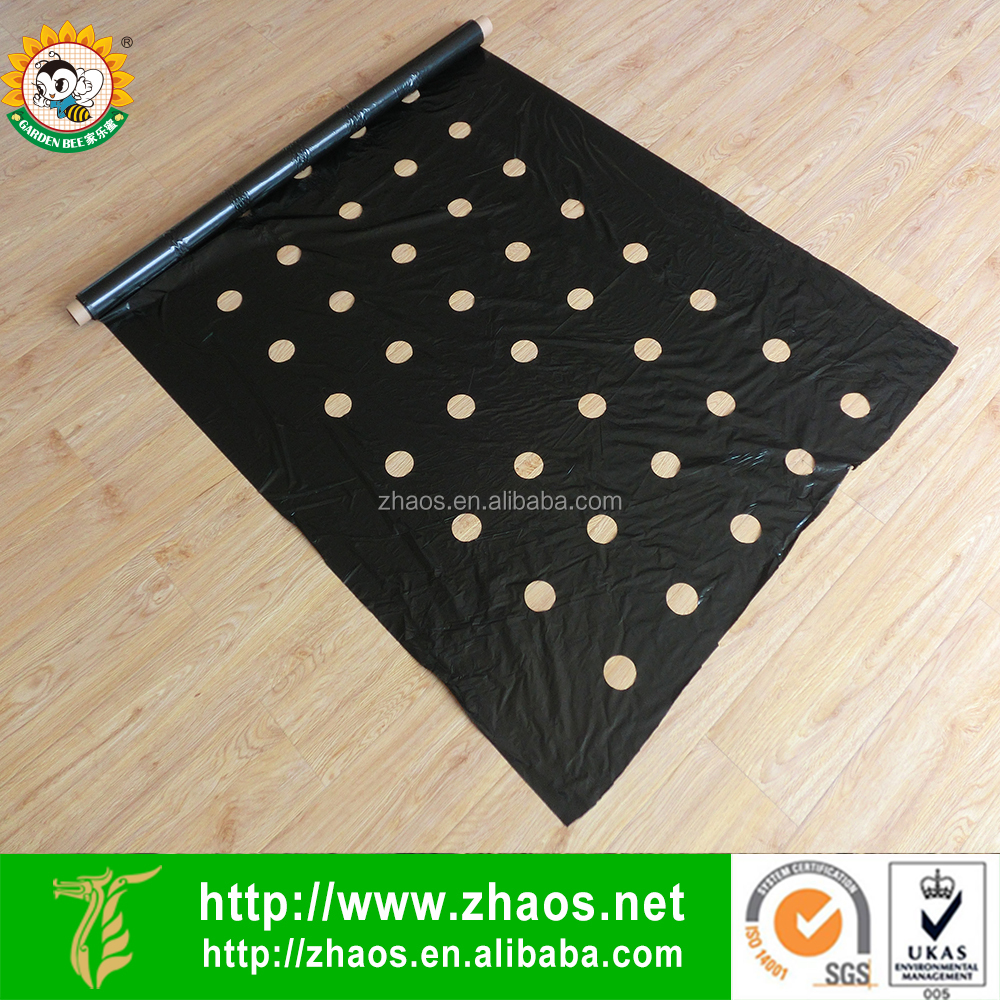 Perforated plastic black agriculture mulch film punch hole