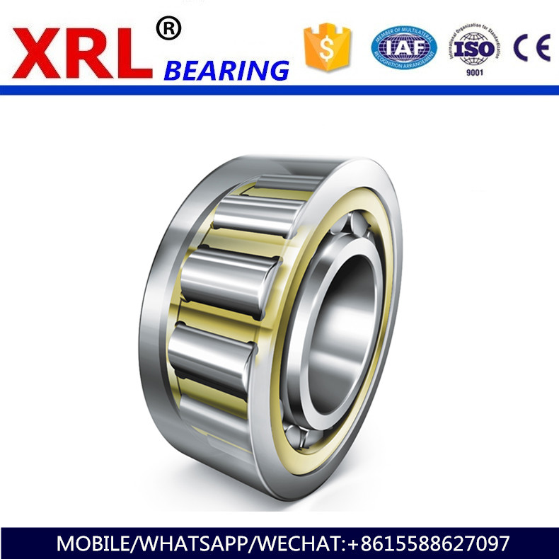 newest light self contained compression cylindrical roller bearing NJ2220E