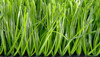 Premium indoor football turf soccer artificial turf price