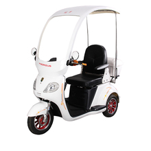 China Supplier Fast 3 Wheel Electric Mobility Scooter Adult Tricycle